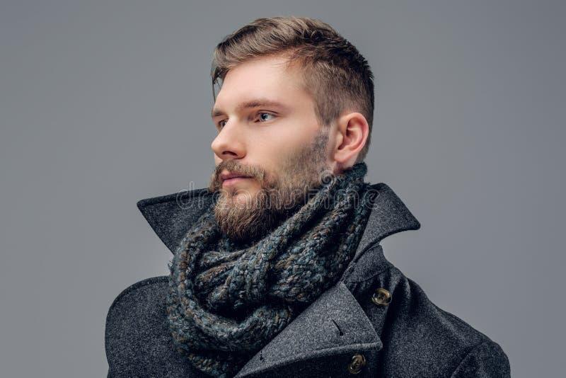 Retrato del hombre barbudo en una chaqueta gris foto de archivo libre de regalías