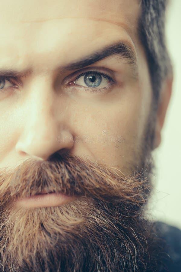Retrato del hombre barbudo hermoso foto de archivo
