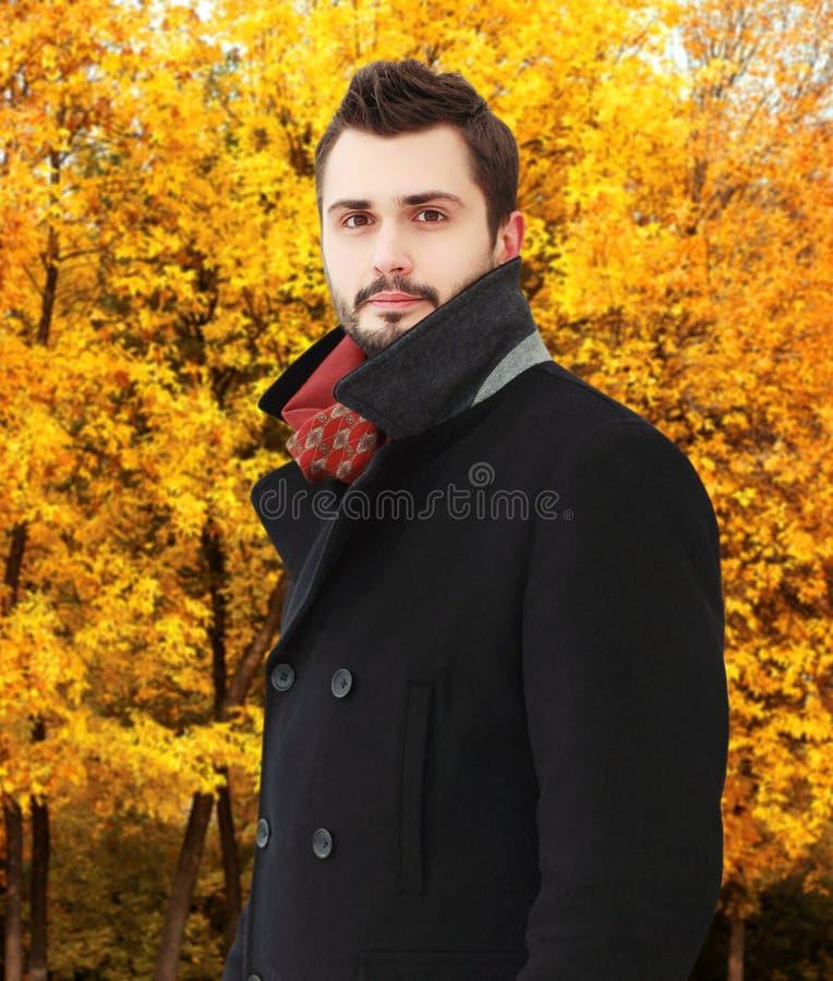 Retrato del hombre barbudo hermoso que lleva una capa negra en otoño fotografía de archivo libre de regalías