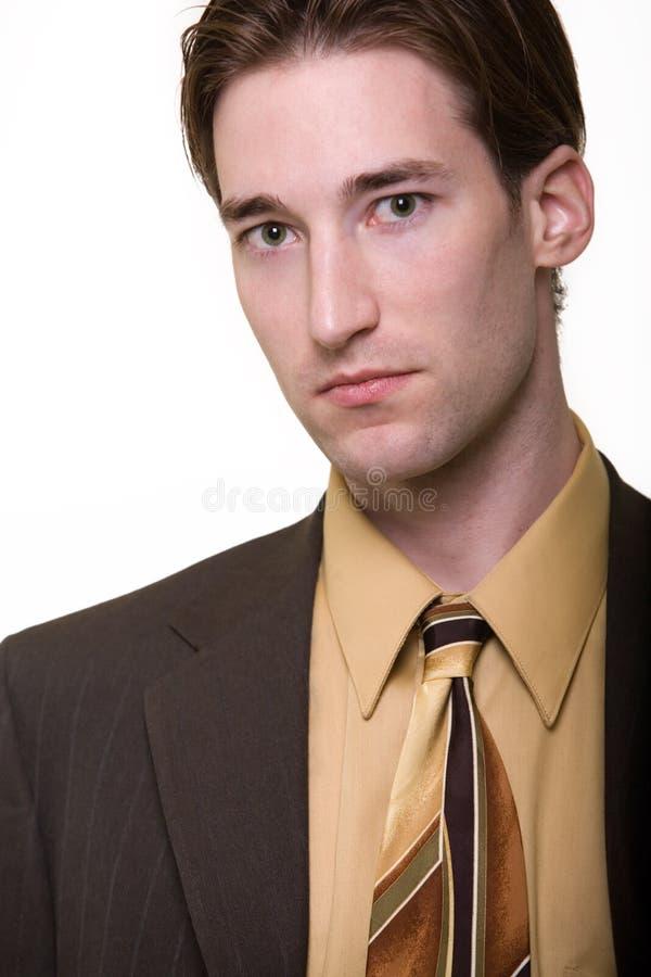 Retrato del hombre de negocios imágenes de archivo libres de regalías