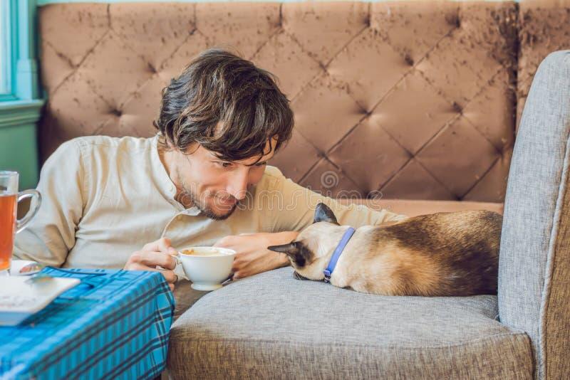 Retrato del hombre joven hermoso que juega con el gato y el café de las bebidas fotografía de archivo
