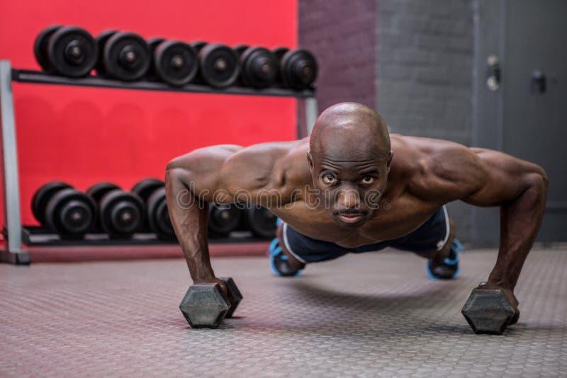 Retrato del hombre muscular que hace pectorales con pesas de gimnasia imagen de archivo