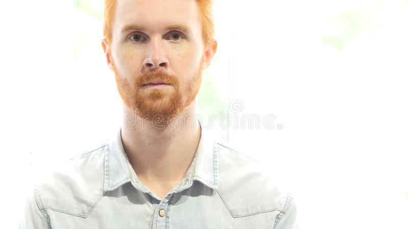 Retrato del hombre rojo de la barba del pelo fotografía de archivo