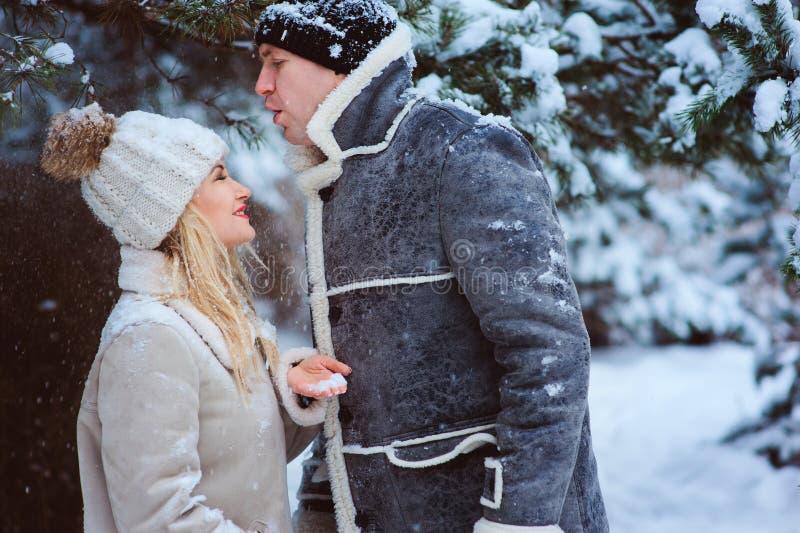 Retrato del invierno de la forma de vida de los pares románticos que caminan y que se divierten fotos de archivo libres de regalías