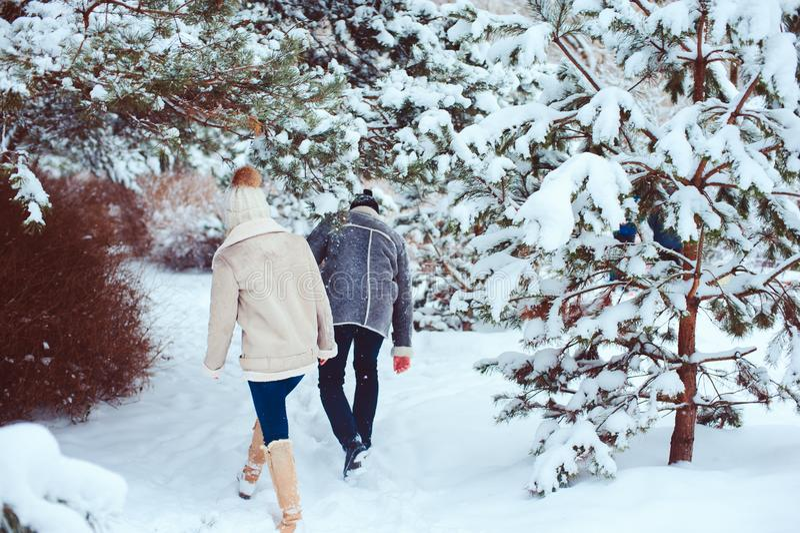 Retrato del invierno de la forma de vida de los pares románticos que caminan y que se divierten foto de archivo