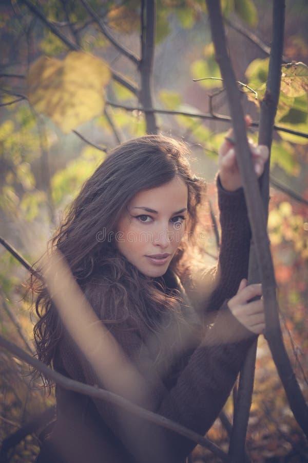 Retrato del invierno de la mujer joven en bosque fotos de archivo libres de regalías