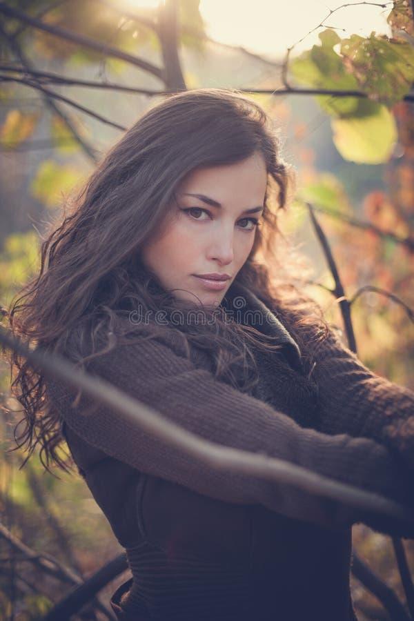 Retrato del invierno de la mujer joven en bosque en la puesta del sol fotos de archivo libres de regalías