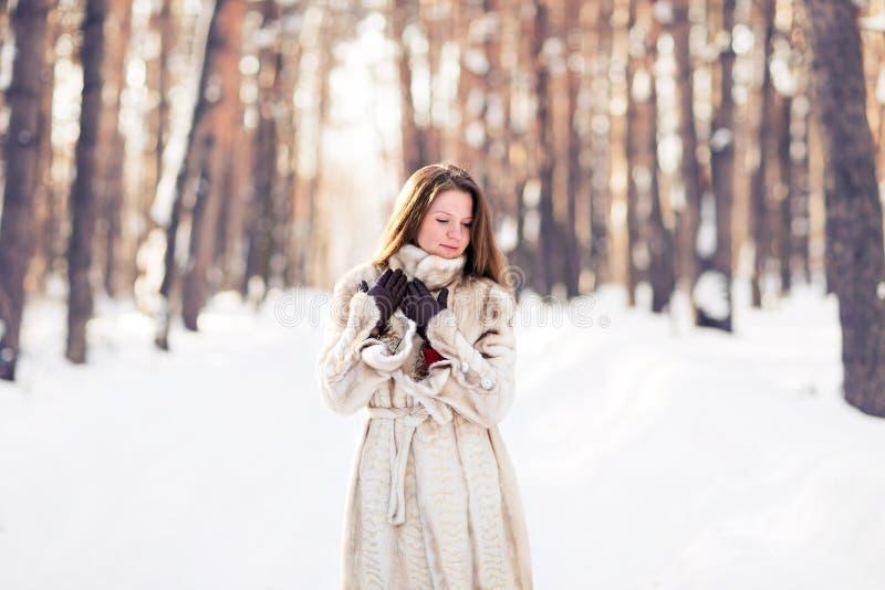 Retrato del invierno del abrigo de pieles que lleva de la mujer hermosa joven Concepto de la moda de la belleza del invierno de l foto de archivo libre de regalías
