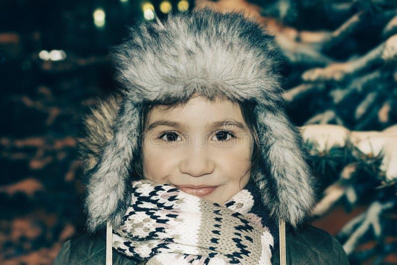 Retrato del invierno en tiempo frío fotografía de archivo