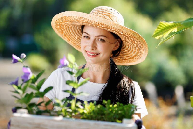 Retrato del jardinero alegre de la mujer joven con las flores en caja de madera en venta en su tienda foto de archivo