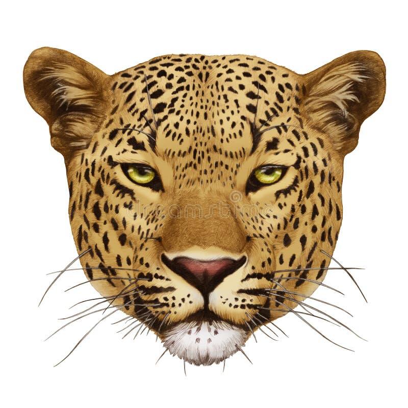 Retrato del leopardo ilustración del vector