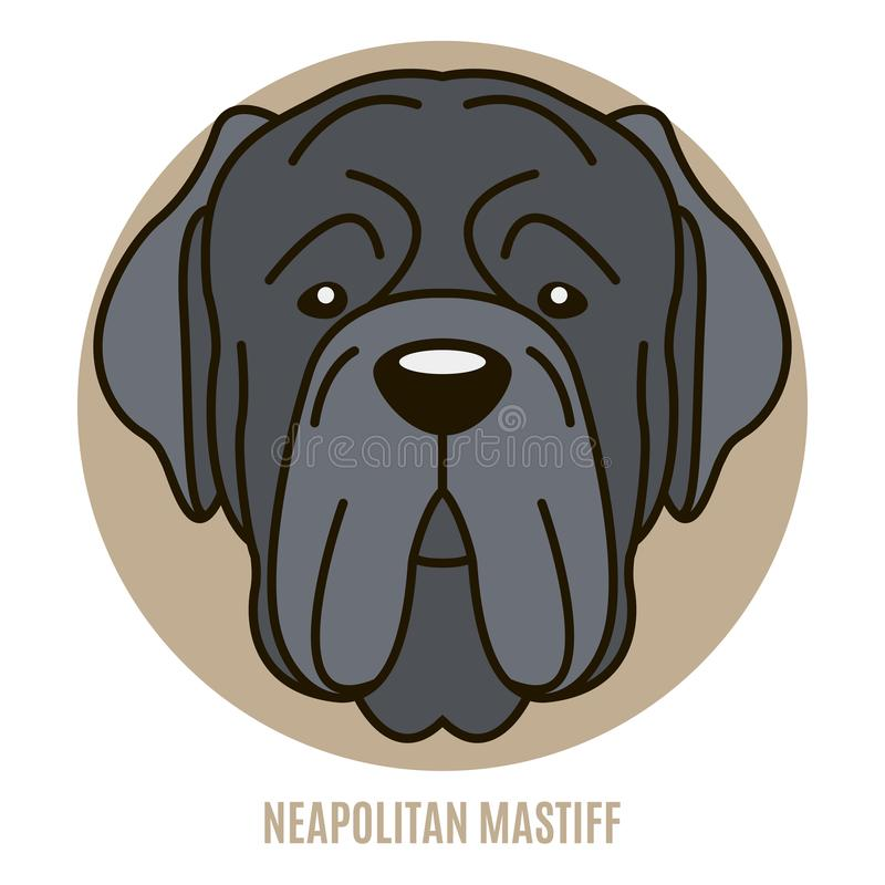 Retrato del mastín napolitano libre illustration