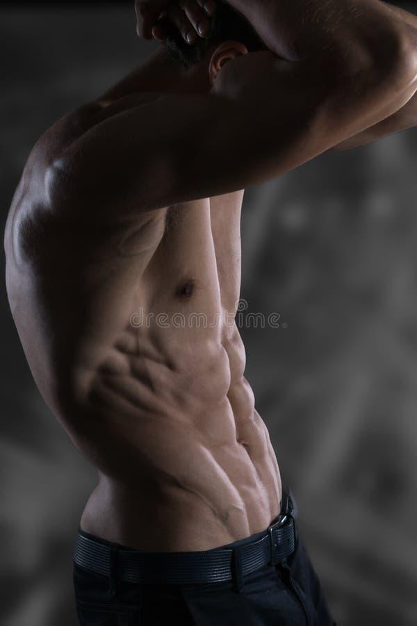 Retrato del modelo atlético hermoso sano fuerte de la aptitud del hombre fotos de archivo
