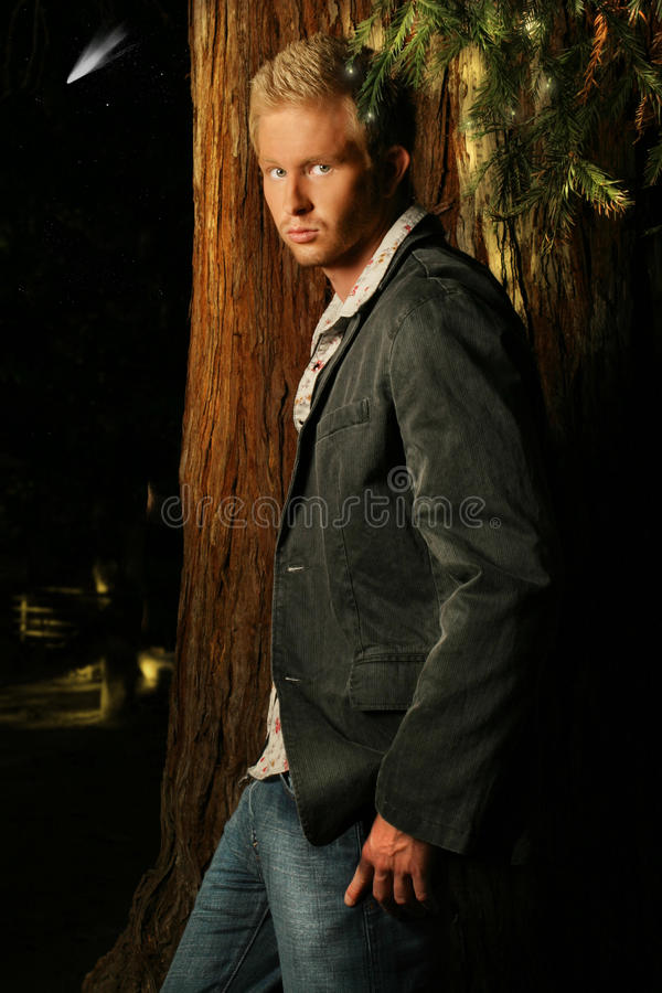 Retrato del modelo masculino joven en bosque imagenes de archivo