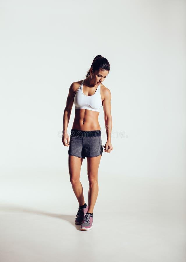Retrato del modelo muscular de la aptitud fotos de archivo
