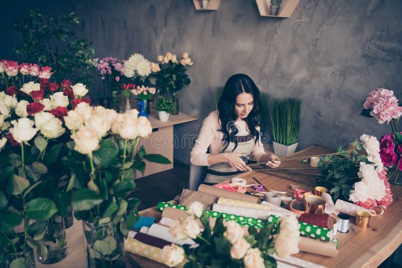 Retrato del patrón creativo concentrado enfocado serio encantador precioso atractivo agradable del empleado de la señora de pelo  imágenes de archivo libres de regalías