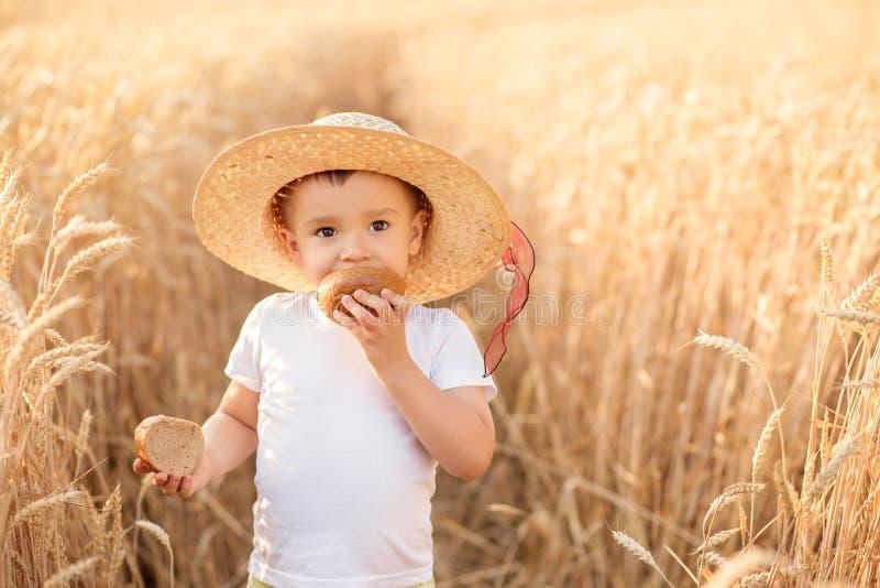 Retrato del pequeño niño en sombrero de paja que come el pan que se coloca en el campo de trigo entre puntos de oro en día de ver fotografía de archivo libre de regalías