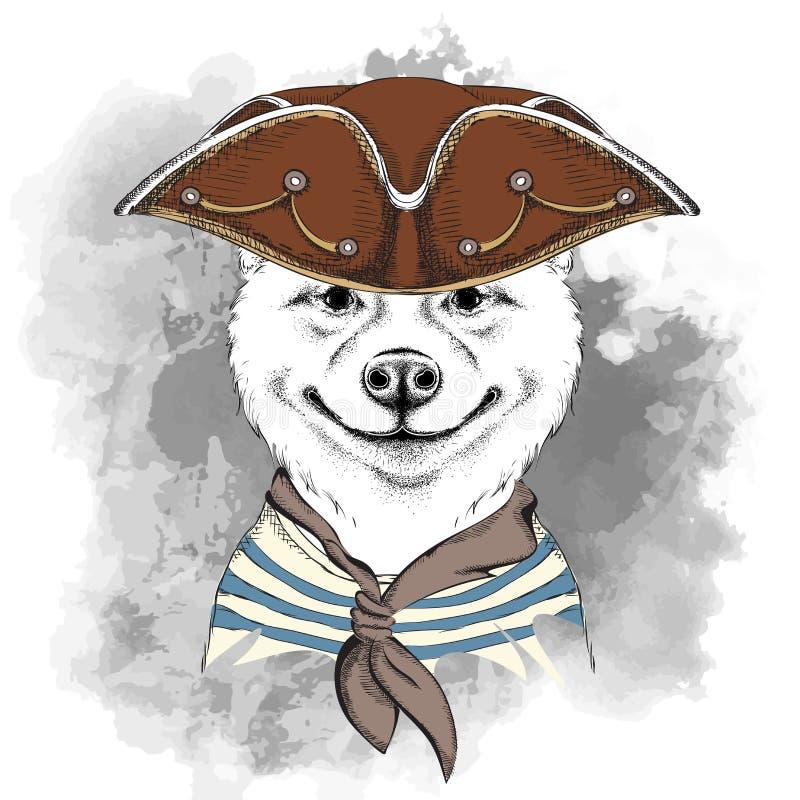 Retrato del perro del inu de Akita en un sombrero del pirata Ilustración del vector ilustración del vector