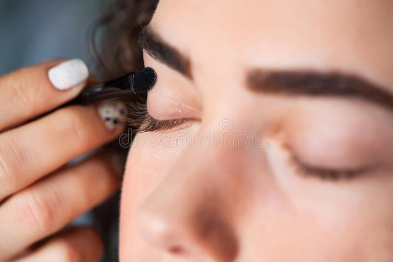 Retrato del primer de la mujer hermosa que consigue maquillaje profesional con el cepillo Belleza y concepto del maquillaje fotos de archivo libres de regalías