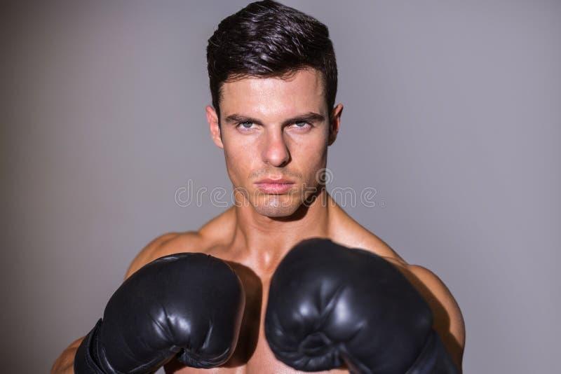 Retrato del primer de un boxeador muscular descamisado fotografía de archivo