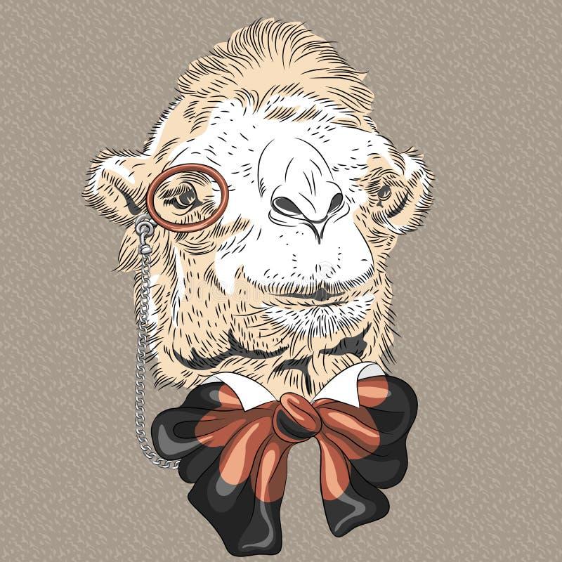 Retrato del primer del vector del inconformista divertido del camello ilustración del vector