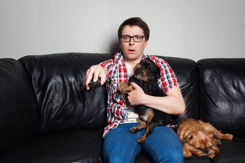 Retrato del primer, hombre joven en la camisa roja, sentándose en el sofá de cuero negro con dos perros, TV de observación, soste imagen de archivo libre de regalías