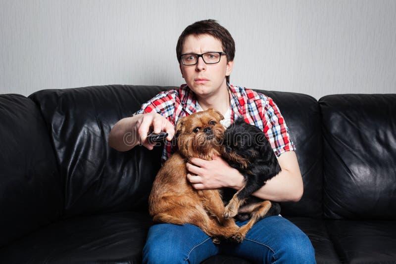 Retrato del primer, hombre joven en la camisa roja, sentándose en el sofá de cuero negro con dos perros, TV de observación, soste fotos de archivo