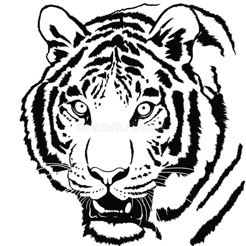 Retrato del tigre stock de ilustración