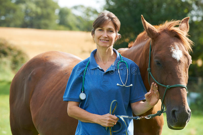 Retrato del veterinario de sexo femenino en campo con el caballo foto de archivo