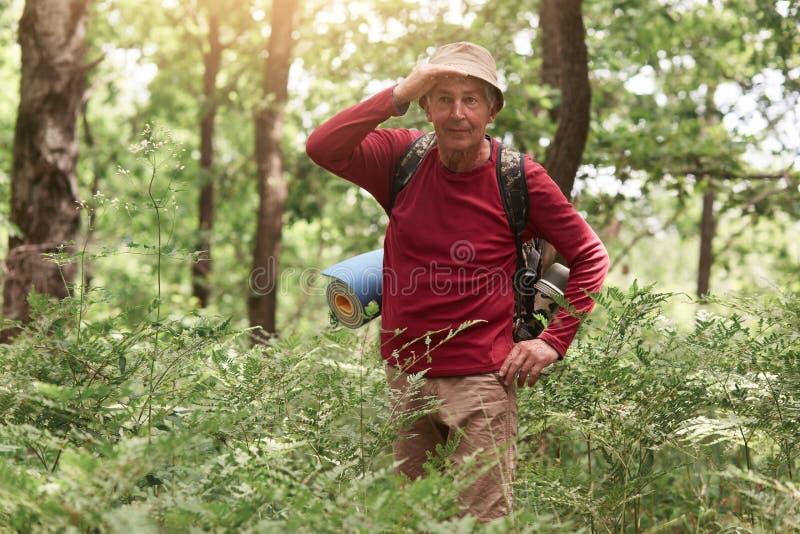 Retrato del viajero mayor atento que tiene viaje en bosque, mirando lejos, cubriendo sus ojos con la mano, siendo feliz, llevando foto de archivo