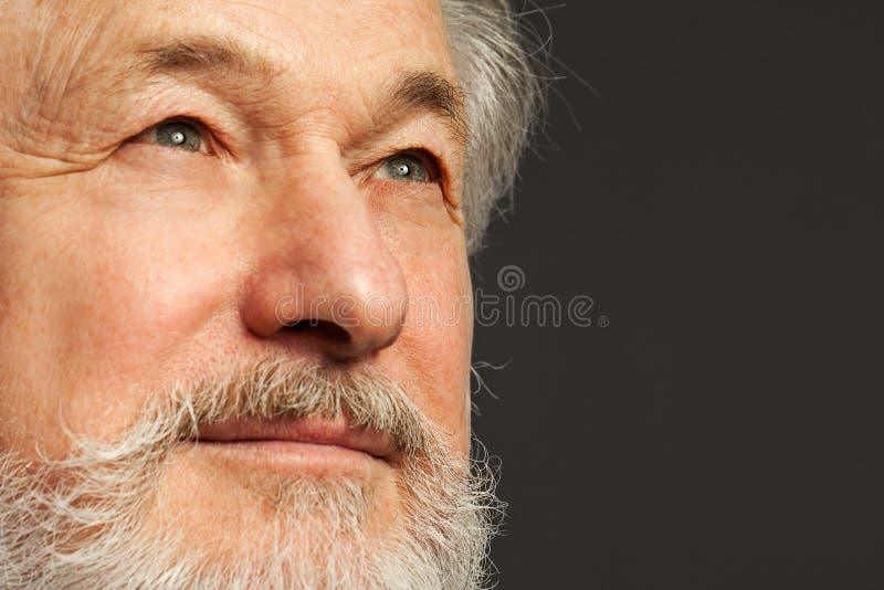 Retrato del viejo hombre con la barba fotos de archivo libres de regalías