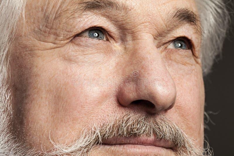 Retrato del viejo hombre con la barba imagenes de archivo