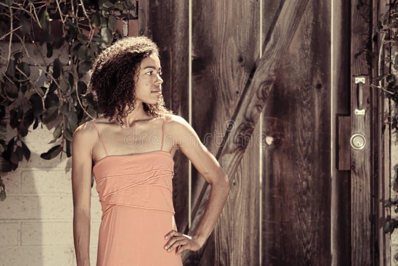 Retrato desvanecido da mulher afro-americano no vestido cor-de-rosa imagem de stock