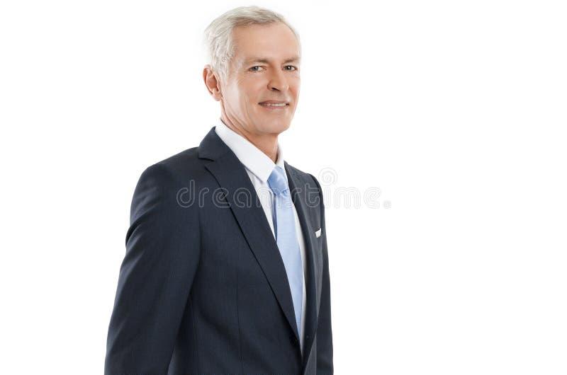 Retrato do alto diretivo foto de stock