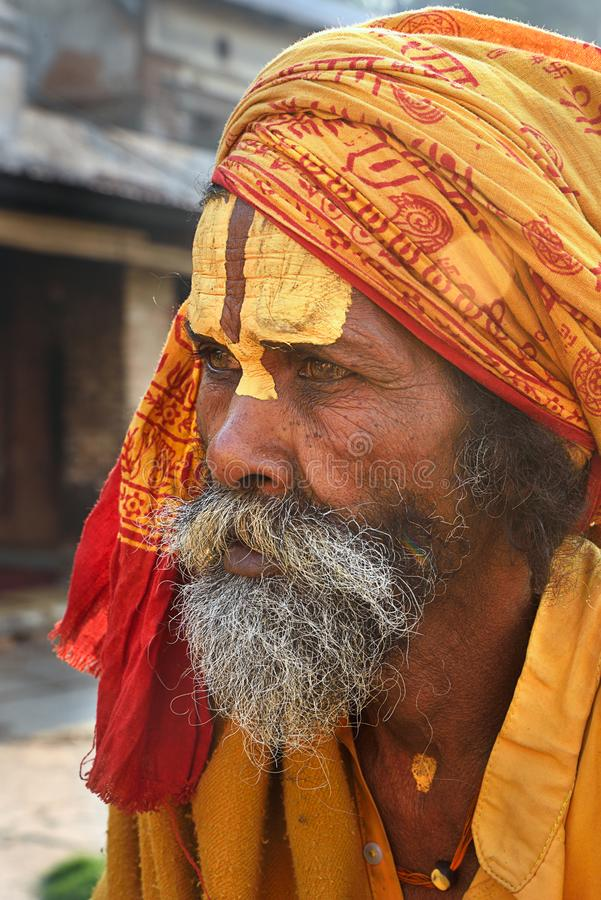 Retrato do babá do sadhu imagens de stock royalty free