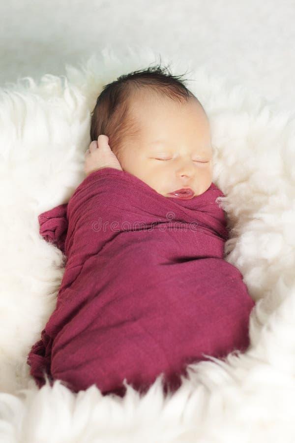 Retrato do bebé recém-nascido imagem de stock