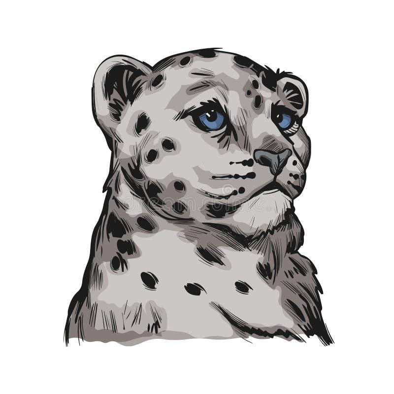 Retrato do bebê-leopardo-da-neve em esboço isolado Vetor de mão-leopardo-pintada com traço da declaração da Pantera ilustração royalty free