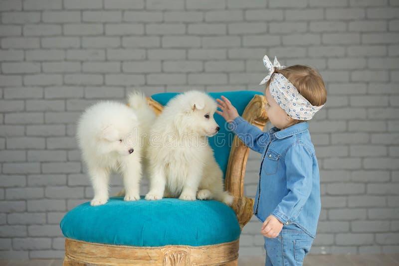 Retrato do bebê louro que joga com papoila ronca Menina modelo com o cabelo louro que levanta no tiro do estúdio com o cachorrinh fotos de stock royalty free