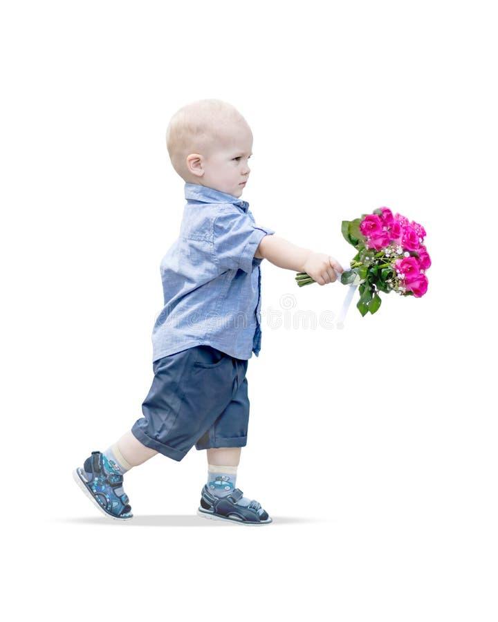 Retrato do bebê pequeno que anda mantendo o ramalhete cor-de-rosa das rosas isolado no fundo branco Cavalheiro pequeno com fotos de stock