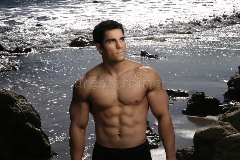 Retrato do Bodybuilder fotos de stock royalty free