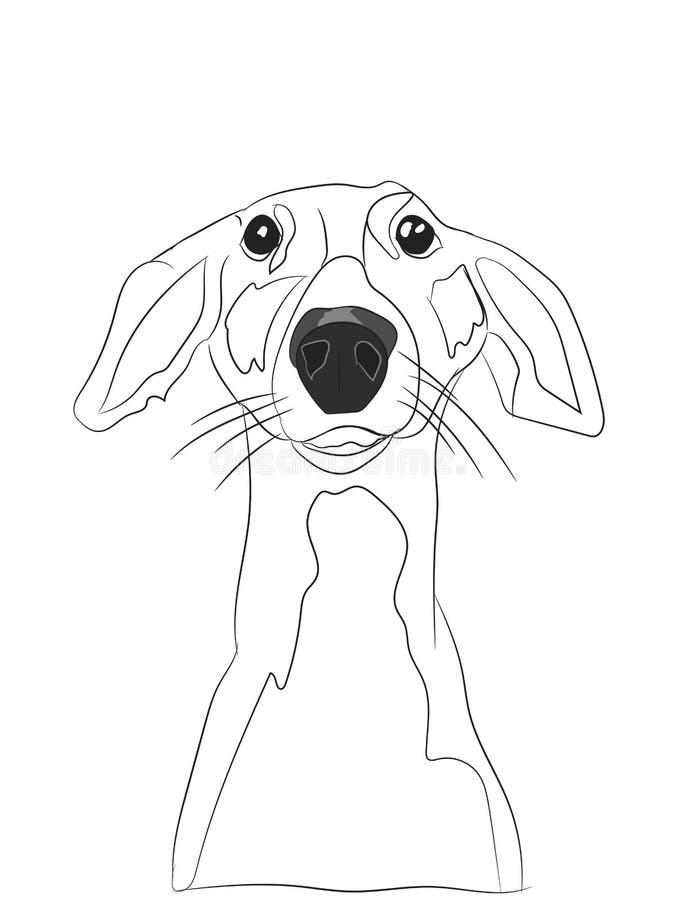 Retrato do cão, linhas, vetor fotos de stock
