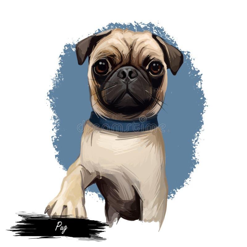 Retrato do cão do Pug isolado no branco Ilustração da arte de Digitas do cão tirado mão para a Web, a cópia do t-shirt e o projet ilustração royalty free
