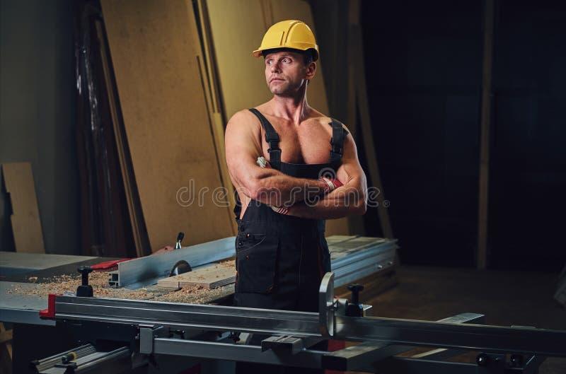 Retrato do carpinteiro muscular descamisado fotografia de stock royalty free