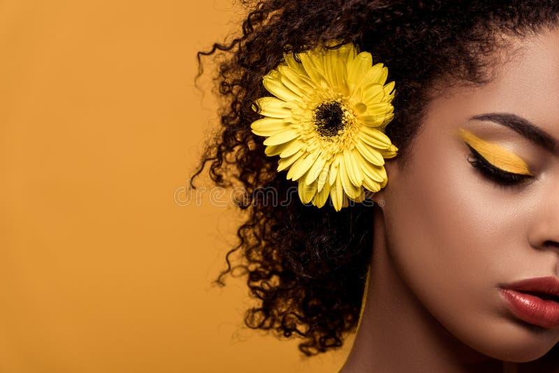 Retrato do close-up da mulher afro-americano sensual nova com composição artística e do gerbera no cabelo imagens de stock