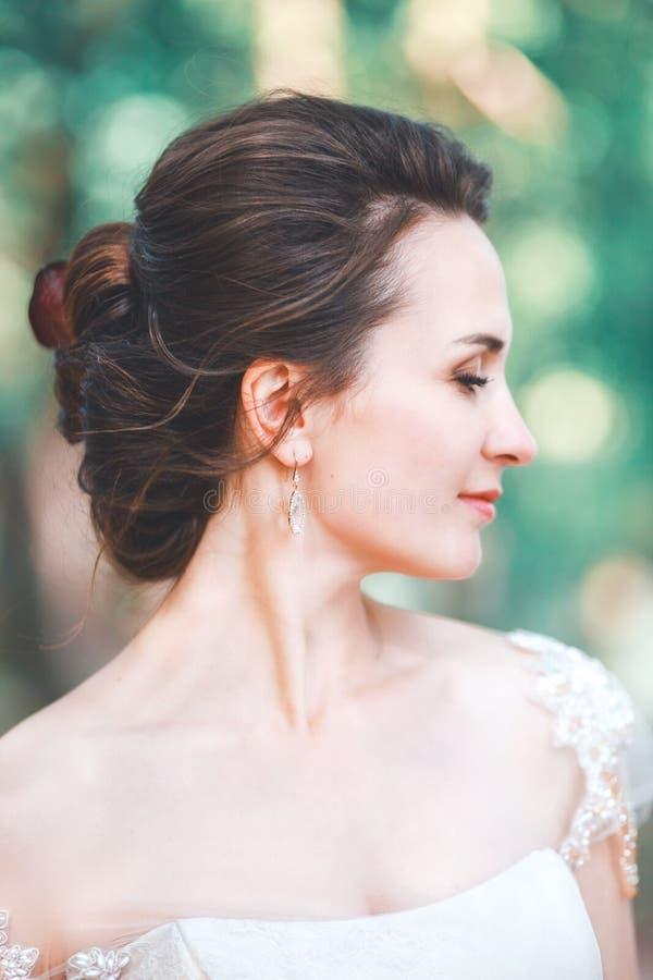 Retrato do close up da noiva lindo nova exterior Composição e penteado do casamento foto de stock