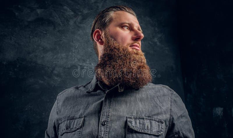 Retrato do close-up de um homem com um corte de cabelo e uma barba à moda que vestem uma camisa cinzenta imagens de stock royalty free