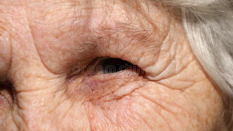 Retrato do close-up de um olhar do ` s da mulher adulta Olho da avó foto de stock