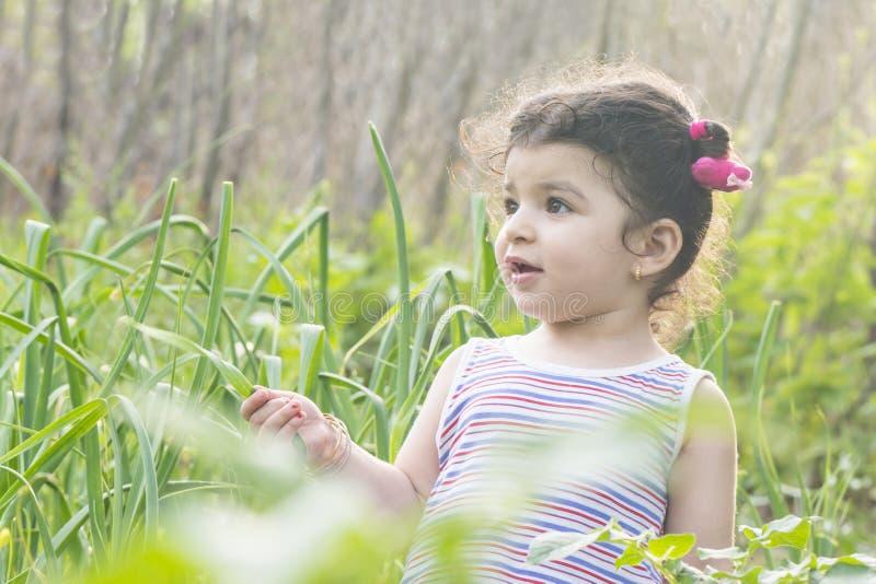 Retrato do close-up de uma menina no campo do verde do jardim na estação de mola fotos de stock