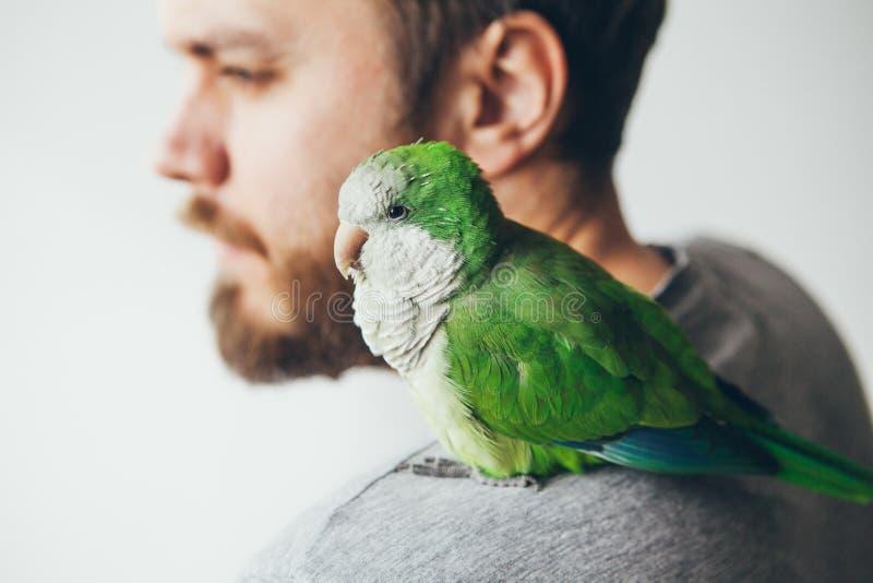Retrato do close-up do homem novo da barba com seu papagaio do Quacre do animal de estimação imagens de stock royalty free