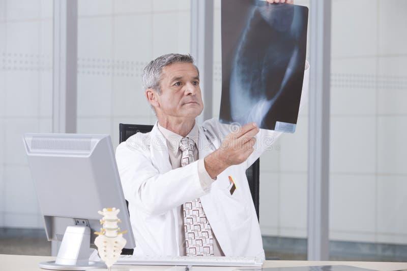 Retrato do doutor masculino fotografia de stock royalty free